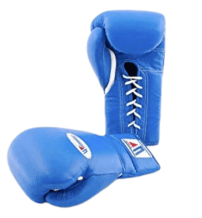 Winning-Training-Boxing-Gloves-14oz-MS500-