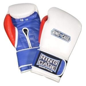 Ring To Cage Japanese Boxing Gloves