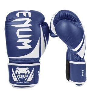 Boxing Gloves Venum